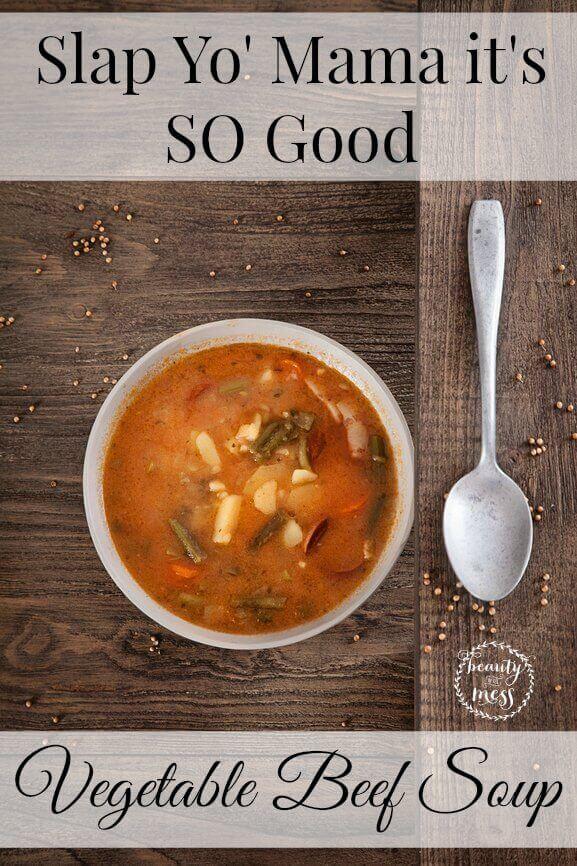 Vegetable Beef Soup-2