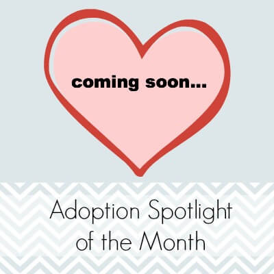 ComingSoon Adoption Spotlight
