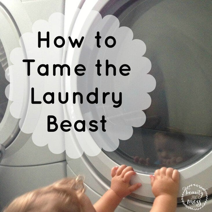 Laundry Beast Tips Square