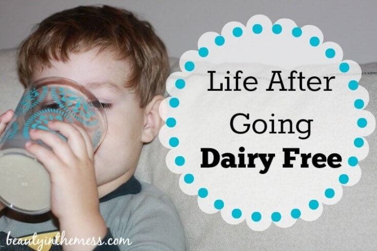 Life After Going Dairy Free