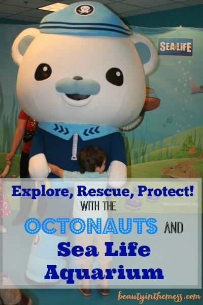 Hugging Captian Octonauts Sea Life