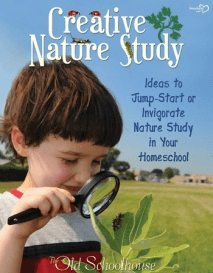 Creative-Nature-Study