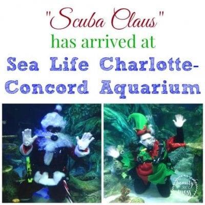 """Scuba Claus"" has arrived at Sea Life Charlotte-Concord Aquarium"
