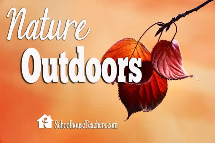 nature-outdoors
