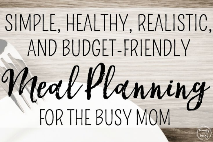 Budget Friendly Meal Planning for the Busy Mom