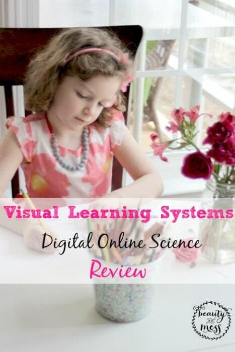 Visual Learning Systems After Video Plants