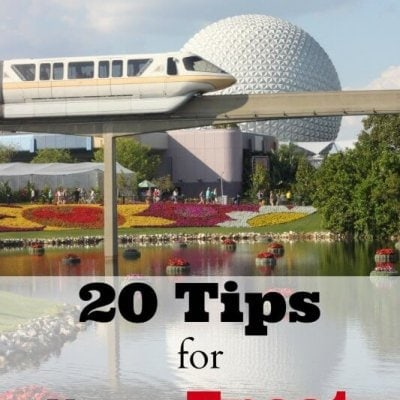20 Tips for Visiting Epcot {with Children}