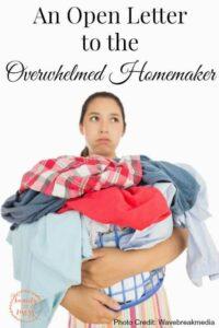 An Open Letter to the Overwhelmed Homemaker-2