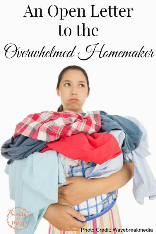 An Open Letter to the Overwhelmed Homemaker-2
