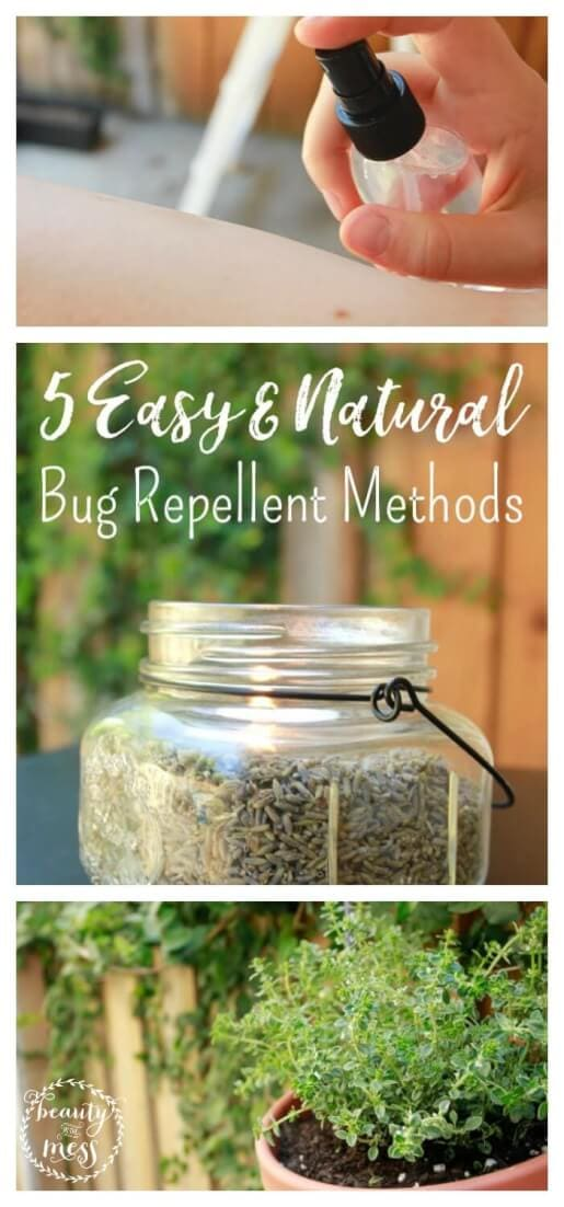 No need for extra chemicals!  Try out a natural bug repellent to keep your guests safe from bug bites while hosting them outdoors.