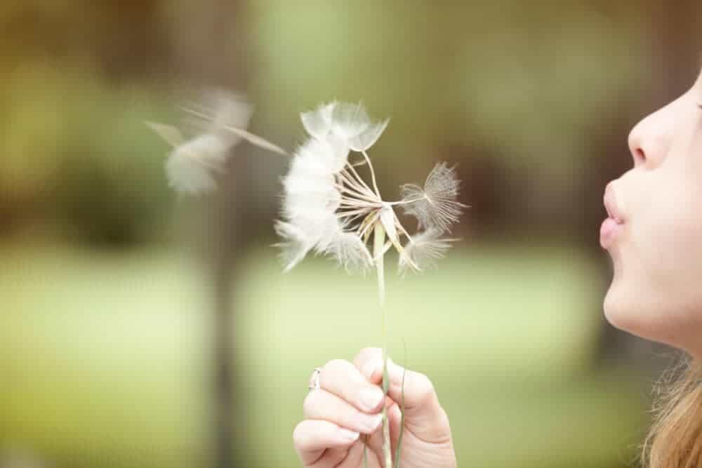 100 Summer Bucket List Ideas Make a Wish