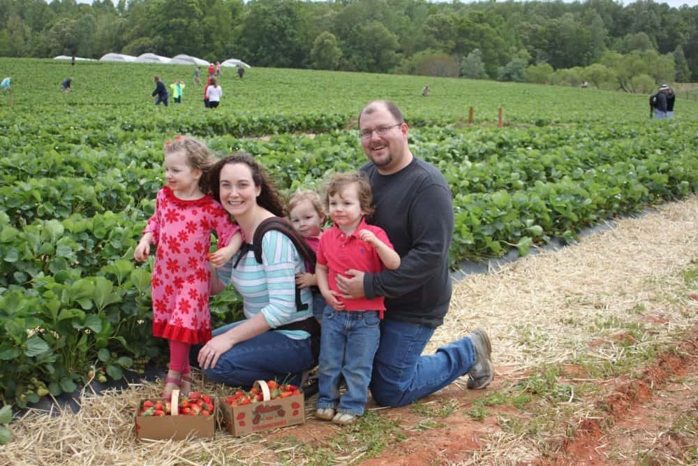 Family Strawberry Field