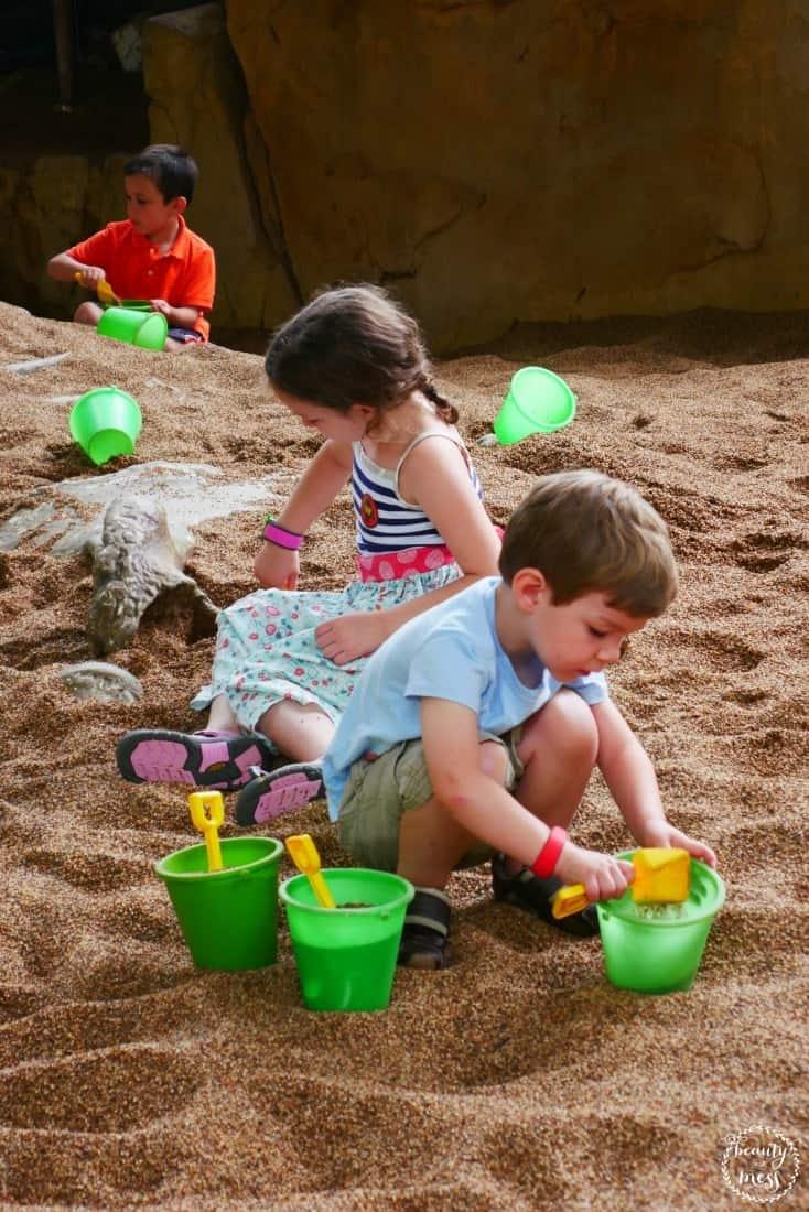The Boneyard Disney's Animal Kingdom Preschool Walt Disney World