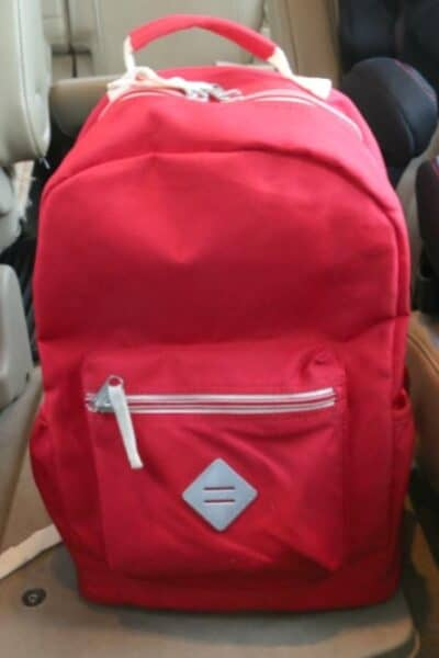 Traveling with Kids Go Pack in Car