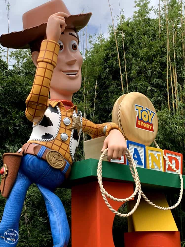 Woody Welcoming You to Toy Story Land